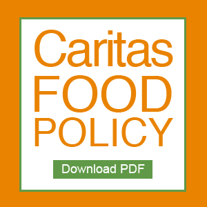 food-policy-link