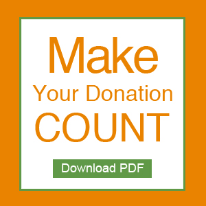 make-donation-count-link